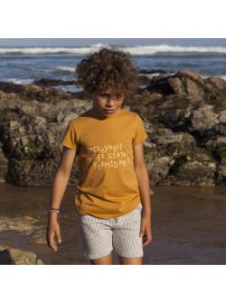 Caramel Incroyable boy's T-shirt